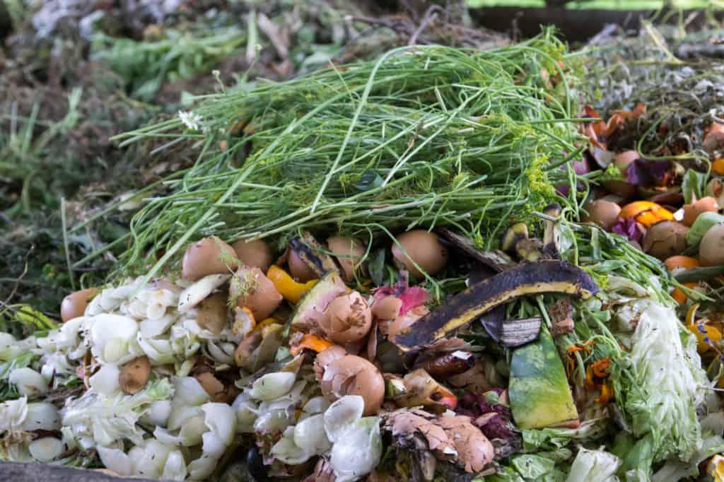 Was darf auf den Kompost (1)