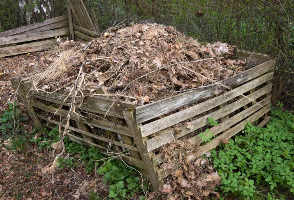 Was darf auf den Kompost (2)