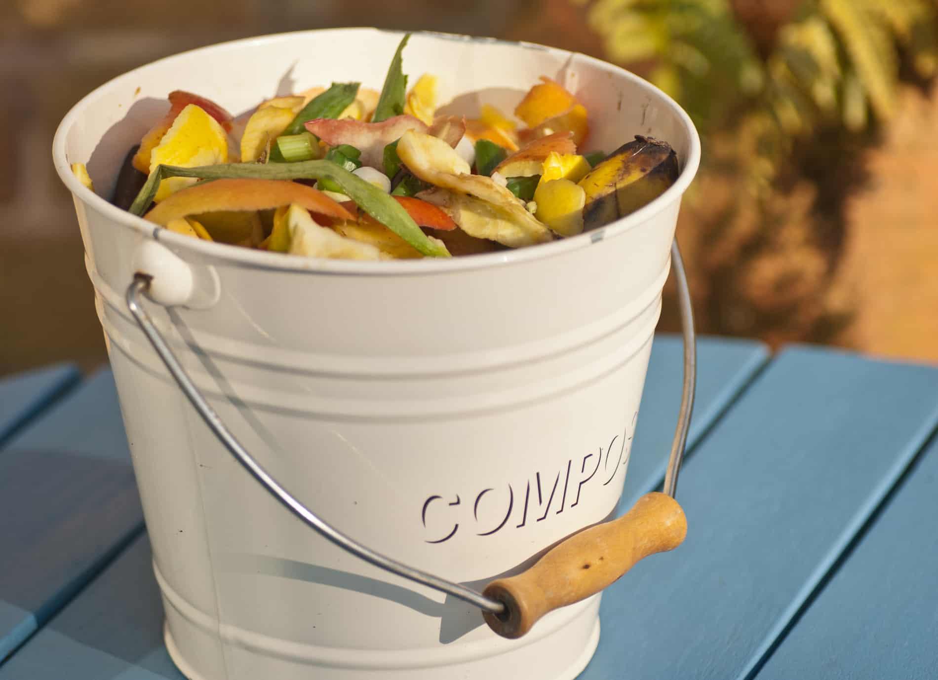 Komposteimer für die Küche - Das sind die 19 besten Modelle