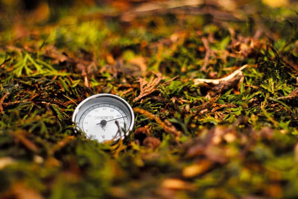 Kompostthermometer im Boden