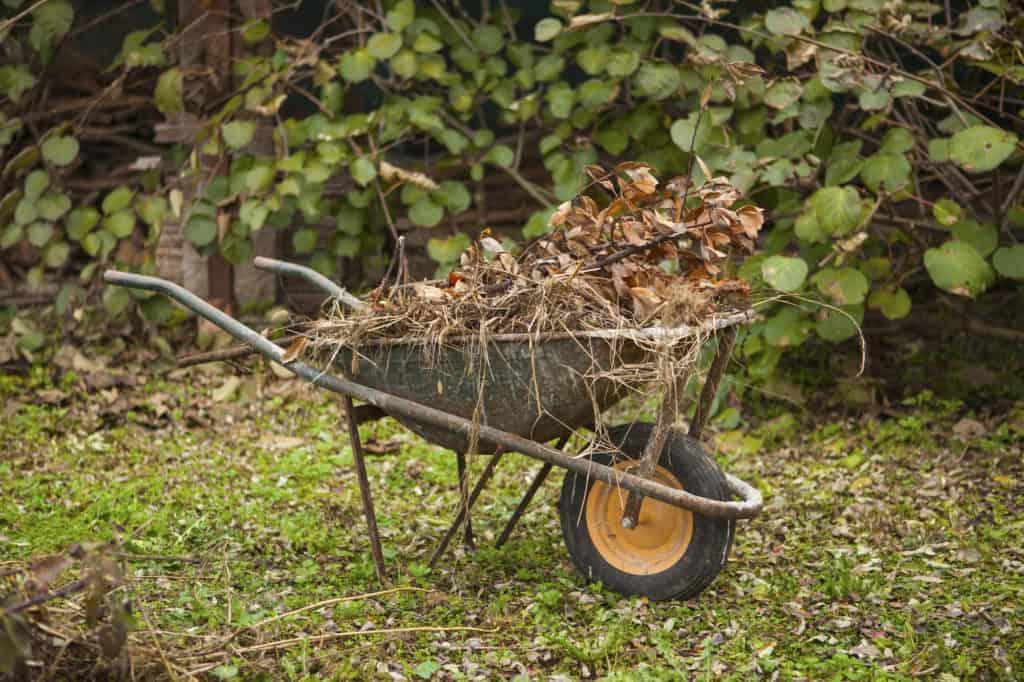 Äste und Zweige im Kompost