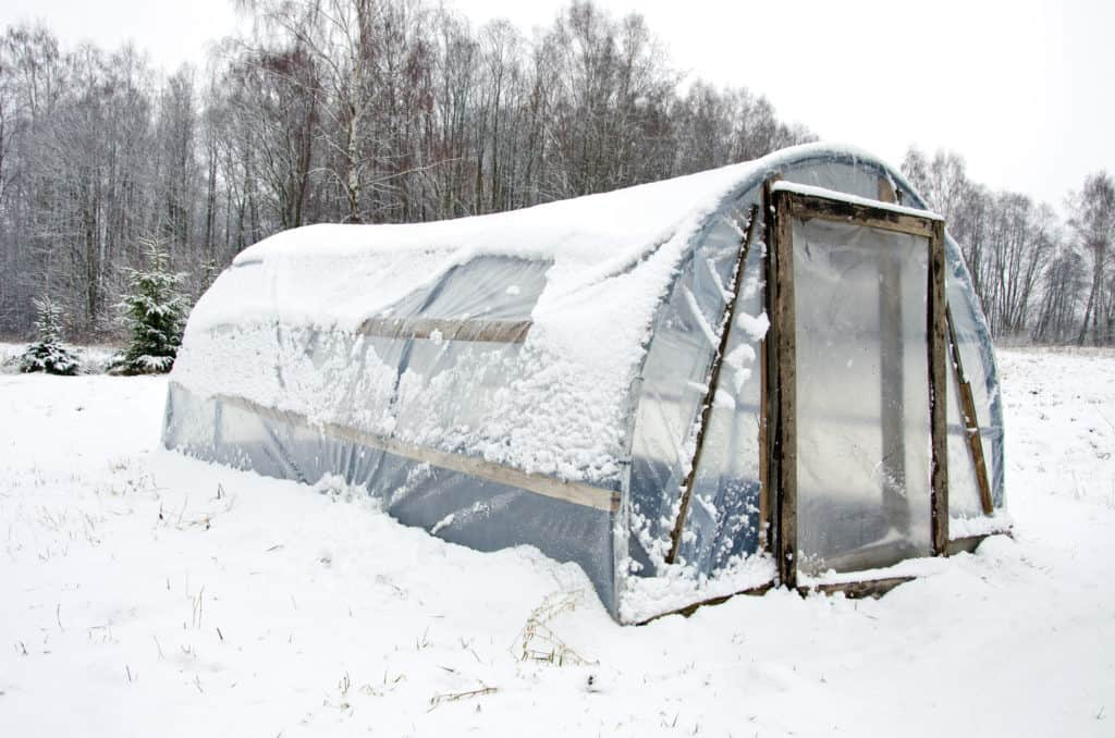 Foliengewächshaus winterfest machen