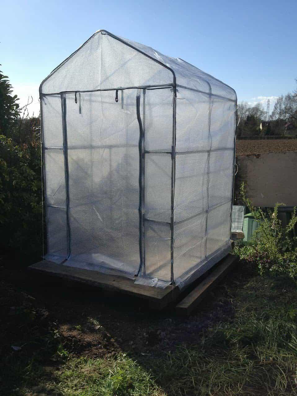Kleines Gewächshaus für Tomaten