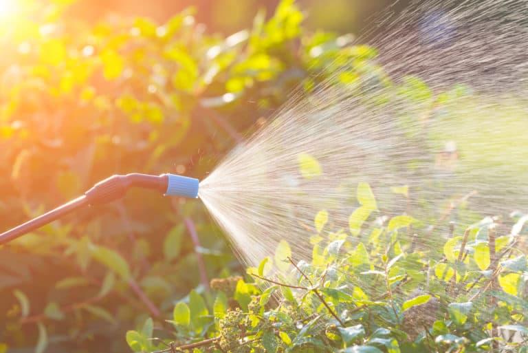 Gewächshaus Bewässerung