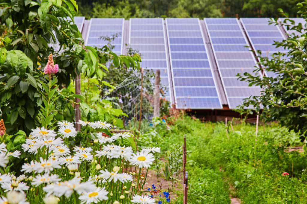 Photovoltaik im Garten
